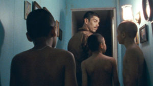We the  Animals (review)